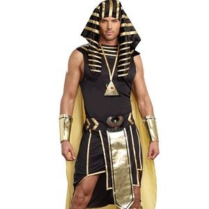 Mens King of Egypt King Tut Costume, Gold, Medium